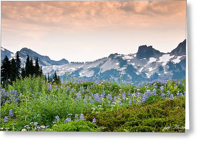 Paradise Meadows And The Tatoosh Range Greeting Card