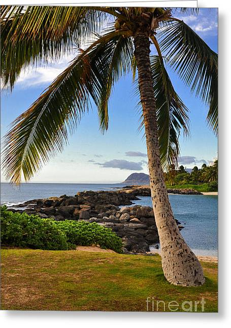 Greeting Card featuring the photograph Paradise Palm by Gina Savage