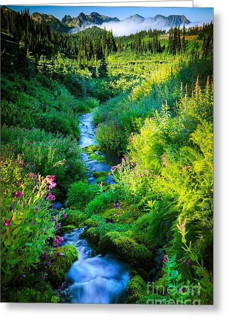 Paradise Stream Greeting Card