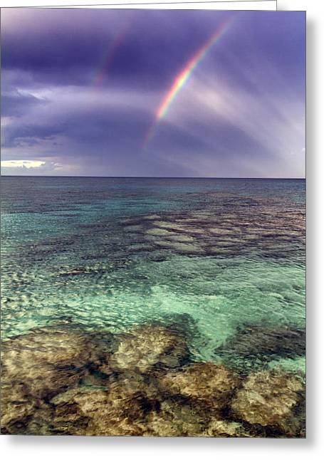 Paradise Greeting Card by Stelios Kleanthous