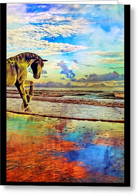 Paradise Sunset Greeting Card by Betsy Knapp
