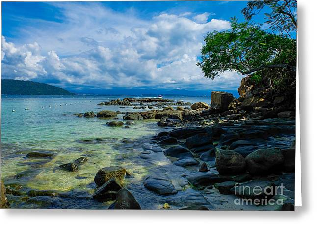Paradise Greeting Card by Will Cardoso