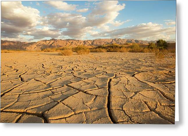 Parched Ground In A Desert Greeting Card by Photostock-israel