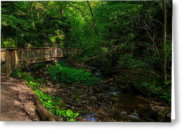 Parfrey's Glen Trail Greeting Card