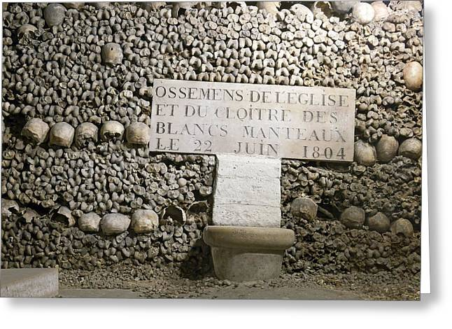 Paris Catacombs Greeting Card by Science Photo Library