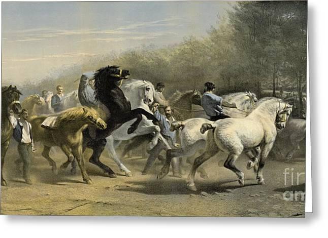Paris Horse Market 1855 Greeting Card by Padre Art