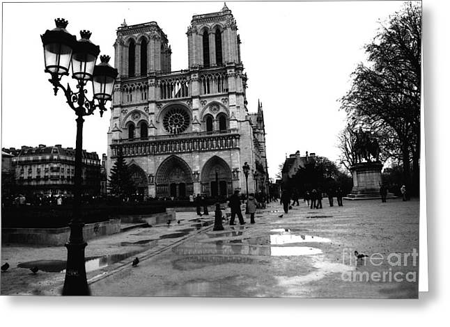 Paris Notre Dame Cathedral - Notre Dame Cathedral Courtyard Rainy Black And White Greeting Card by Kathy Fornal