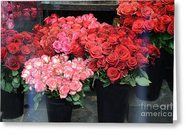 Paris Red And Pink Roses - Paris Dreamy Roses Photography - Paris Valentine Red Roses  Greeting Card by Kathy Fornal