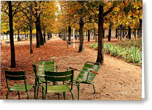 Paris Tuileries Gardens And Trees - Jardin Des Tuileries Gardens Parks Autumn - Paris Fall Autumn Greeting Card