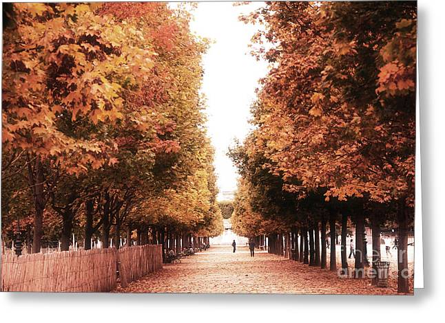 Paris Tuileries Row Of Trees - Jardin Des Tuileries Autumn Fall Colors Tree Landscape  Greeting Card