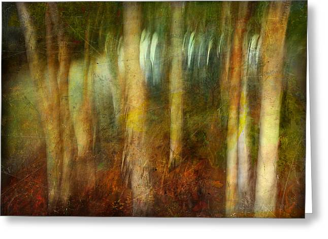 Greeting Card featuring the photograph Park #8. Memory Of Trees by Alfredo Gonzalez