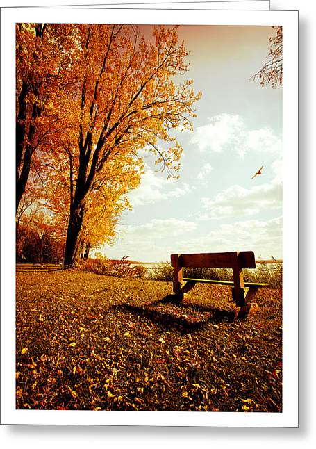 Park Bench Greeting Card