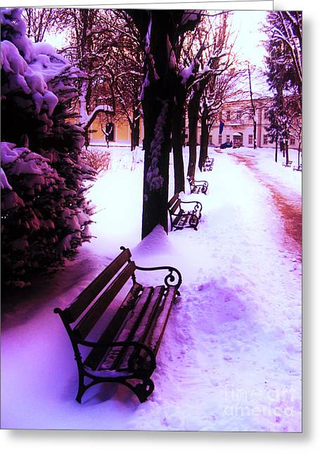 Park Benches In Snow Greeting Card by Nina Ficur Feenan