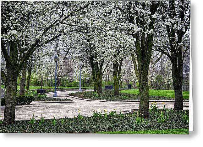 Park Blossoms Greeting Card