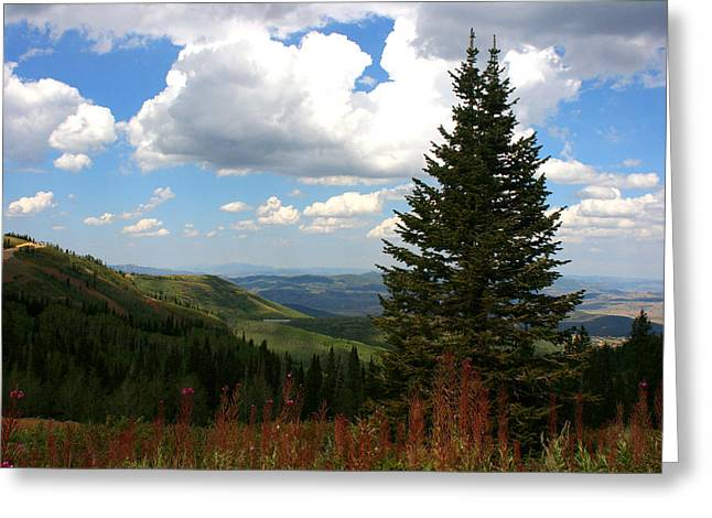 Park City Utah View Greeting Card by Darrin Aldridge