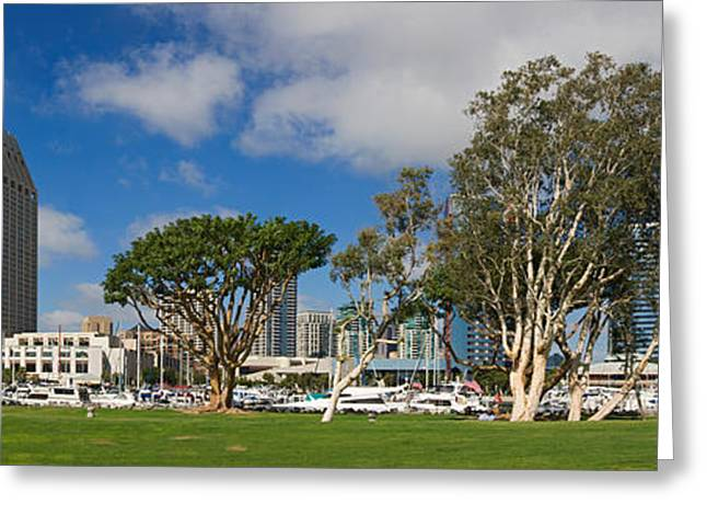Park In A City, Embarcadero Marina Greeting Card by Panoramic Images