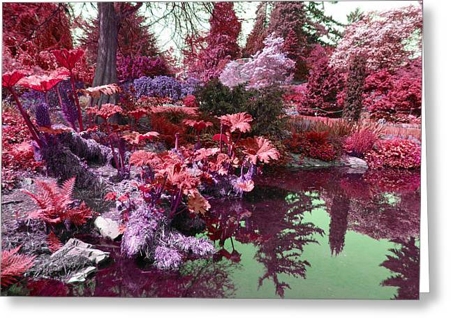 Greeting Card featuring the photograph Park Pond Red by Laurie Tsemak