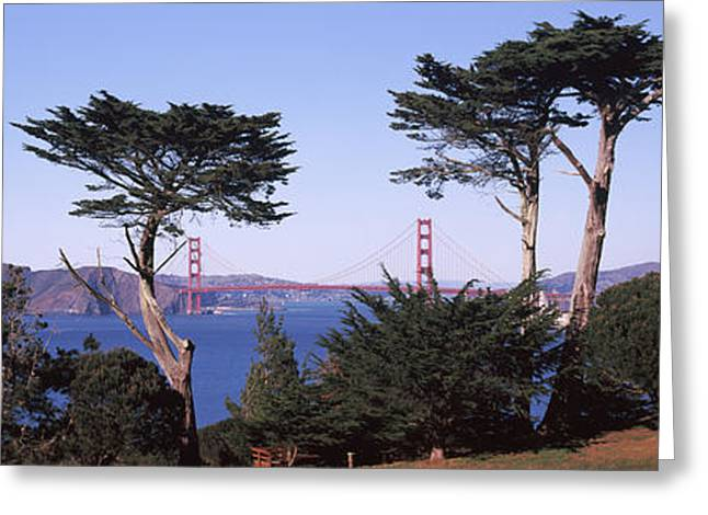 Park With Golden Gate Bridge Greeting Card by Panoramic Images