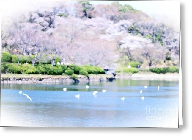 Park With Pond And Cherry Blossoms In Spring Greeting Card by Beverly Claire Kaiya