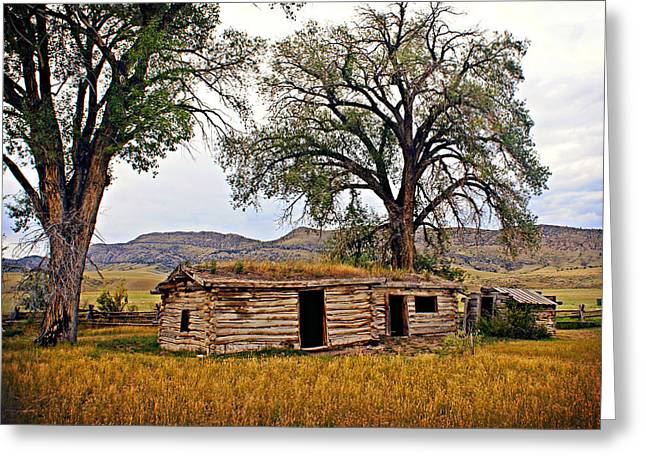 Parker Homestead Greeting Card by Marty Koch