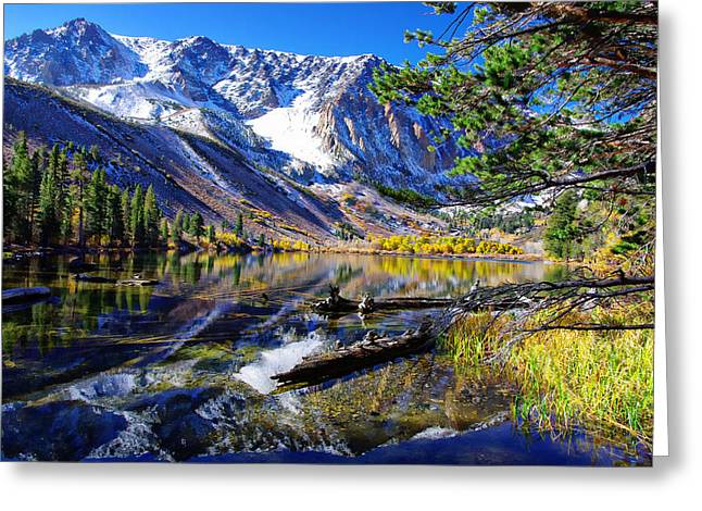 Parker Lake California Greeting Card by Scott McGuire