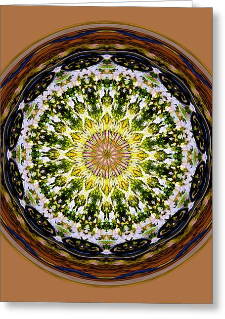Parkside Mandala Greeting Card by Bill Barber