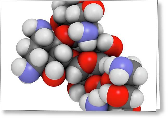 Paromomycin Aminoglycoside Antibiotic Greeting Card by Molekuul