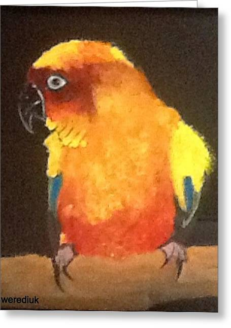 Parrot Greeting Card by Catherine Swerediuk