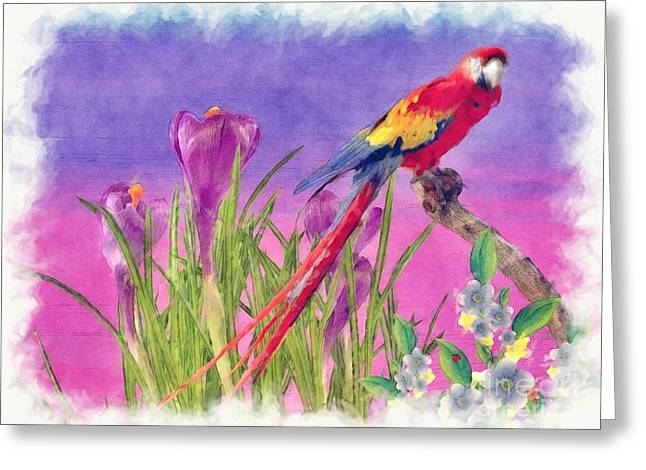 Parrot Greeting Card by Liane Wright