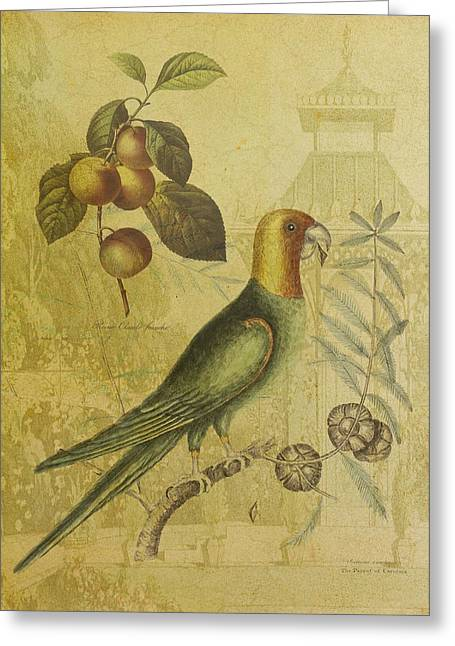 Parrot With Plums Greeting Card by Sarah Vernon