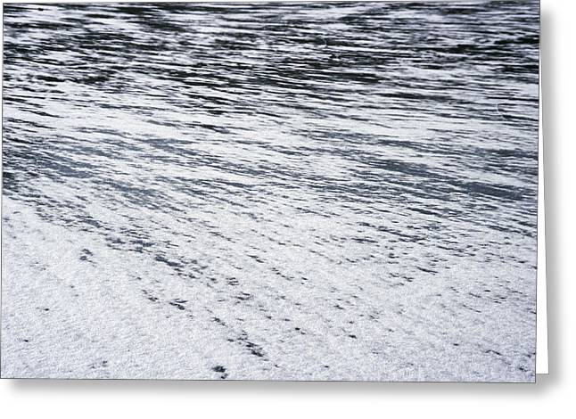 Part Of A Cold Lake Greeting Card by Patrick Kessler