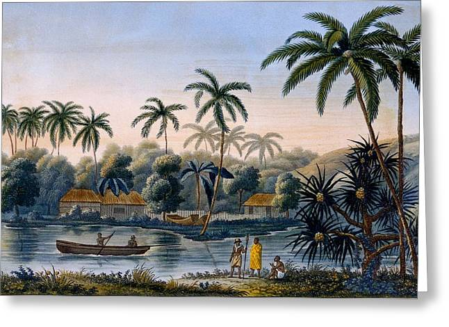 Part Of The Village Of Matavae, Coconut Greeting Card by French School