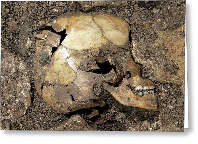 Partially Excavated Human Fossil Greeting Card by Javier Trueba/msf