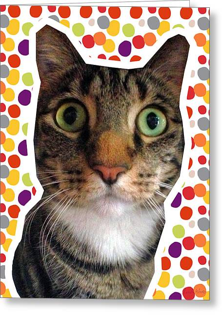 Party Animal- Cat With Confetti Greeting Card by Linda Woods