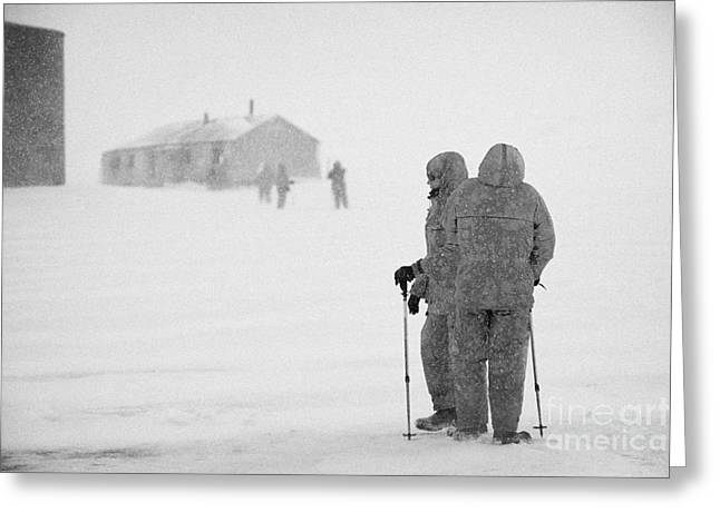 Passengers From Expedition Ship On Shore Excursion To Whaler's Bay Antarctica Greeting Card