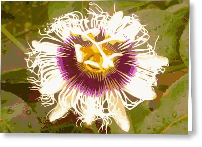 Passion Fruit Flower Greeting Card by Ricardo  De Almeida