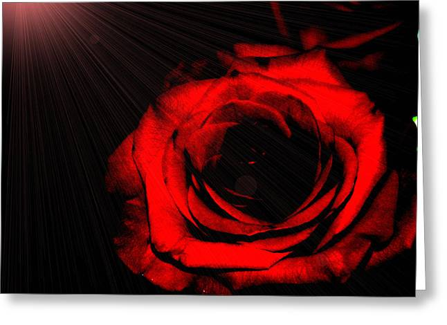 Passion. Red Rose Greeting Card