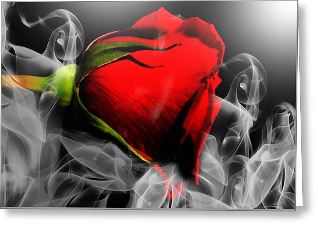 Passionate Red Hot Smoky Rose Greeting Card by Georgiana Romanovna