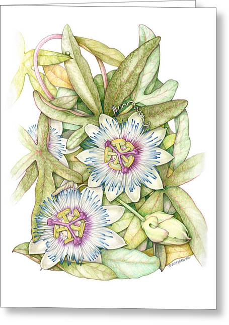 Passionflower Greeting Card by Elizabeth Martin