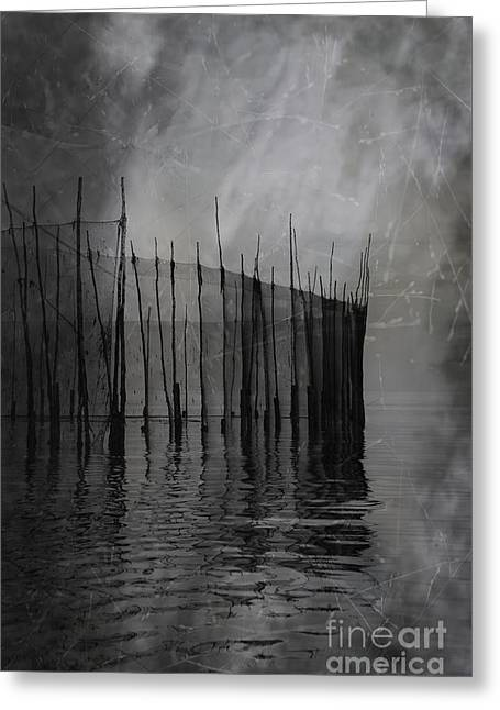 Past Silence.. Greeting Card