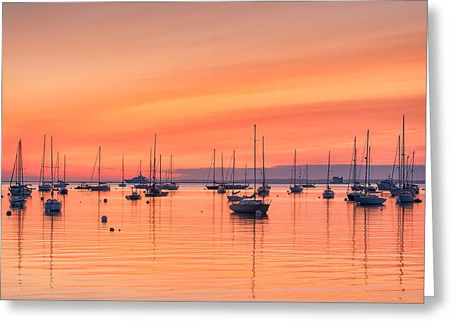 Pastel Harbor Greeting Card