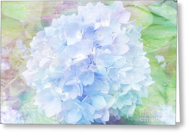 Pastel Hyacinth Greeting Card