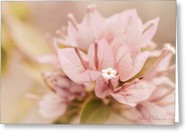 Pastel Paper Flower Bougainvillea Greeting Card by Julie Palencia