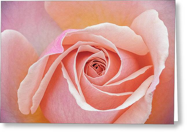 Pastel Passion Greeting Card