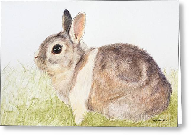 Pastel Pet Rabbit Greeting Card