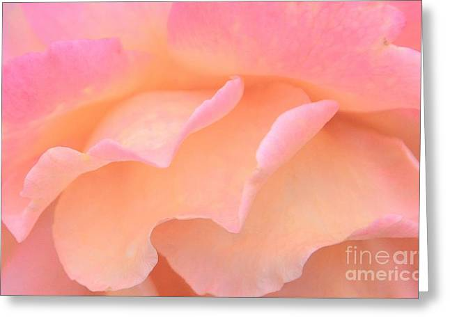 Pastel Ruffles Greeting Card by Kathleen Struckle