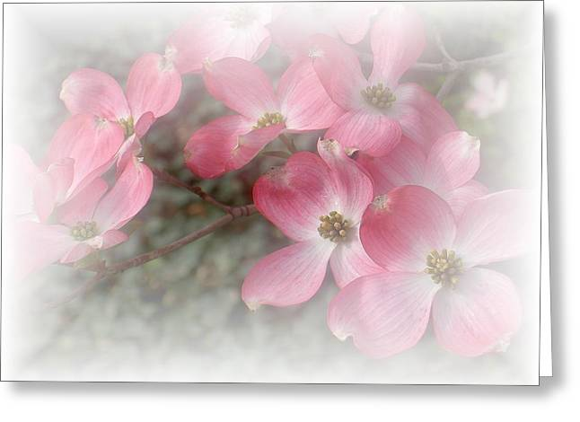 Pastels In Pink Greeting Card