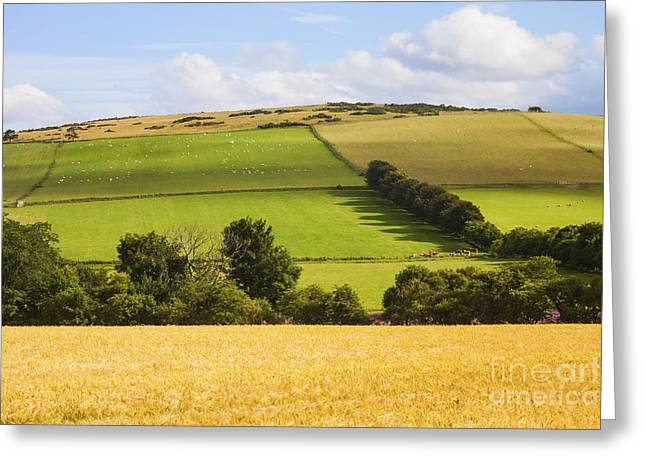 Pastoral Scene Greeting Card