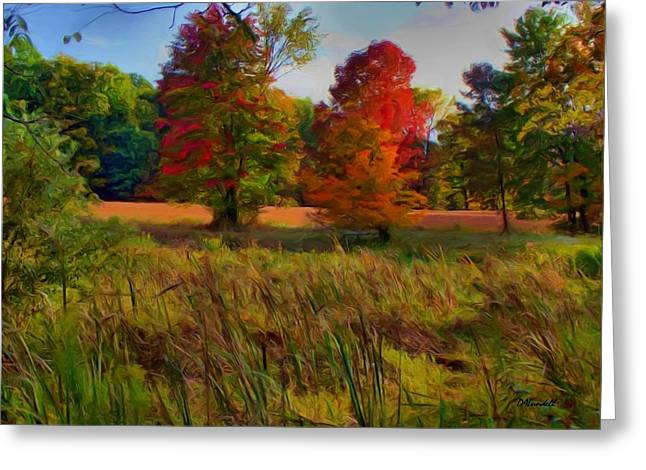 Pasture Gone Fallow Greeting Card by Dennis Lundell