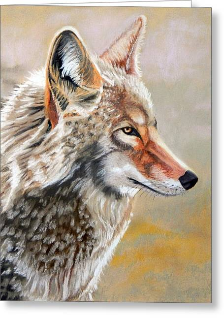 Patchwork Coyote Greeting Card by Tanya Provines